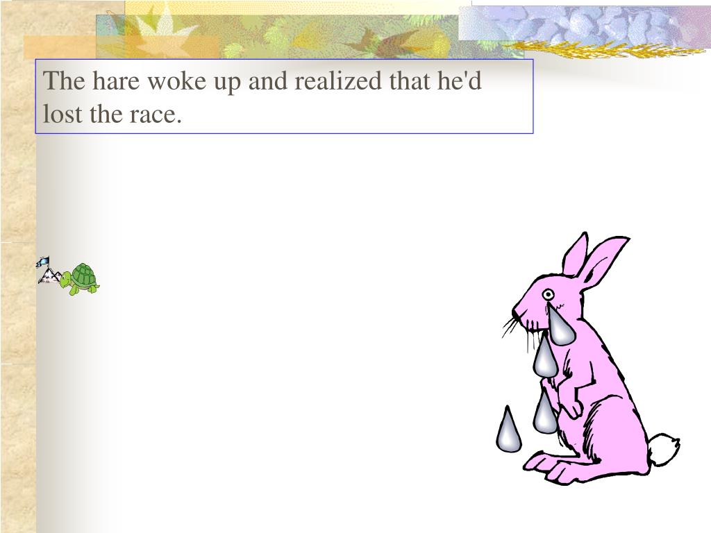 The hare woke up and realized that he'd lost the race.