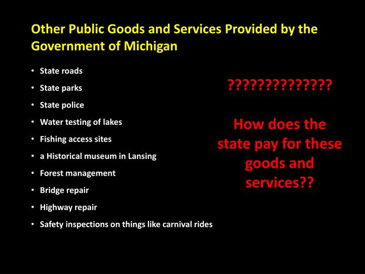 Other Public Goods and Services Provided by the Government of Michigan