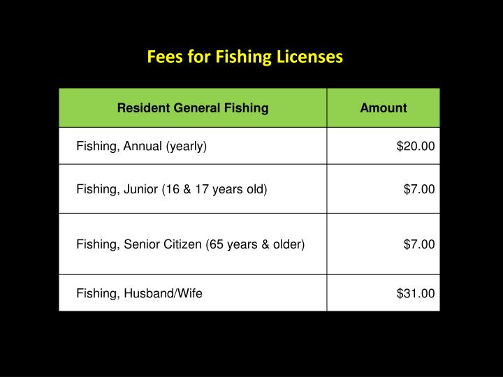 Fees for Fishing Licenses