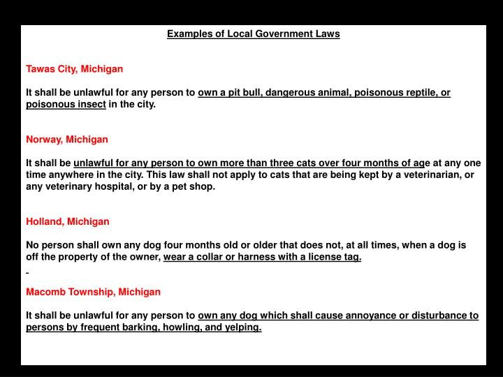 Examples of Local Government Laws