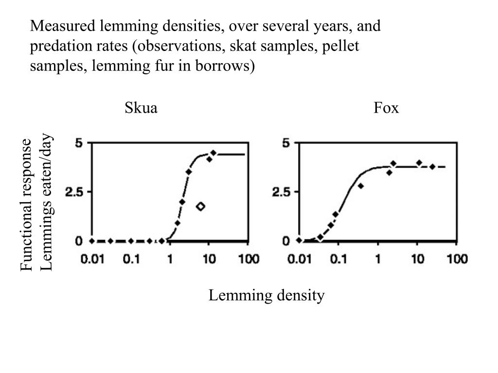 Measured lemming densities, over several years, and predation rates (observations, skat samples, pellet samples, lemming fur in borrows)