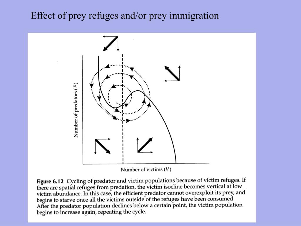 Effect of prey refuges and/or prey immigration