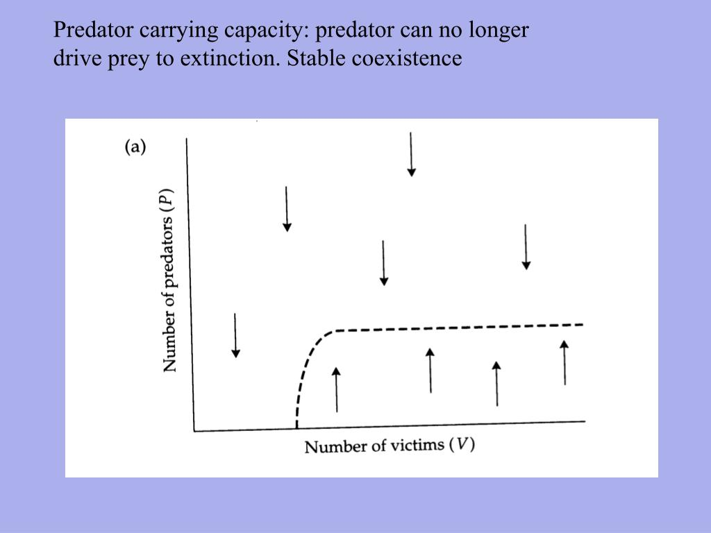 Predator carrying capacity: predator can no longer