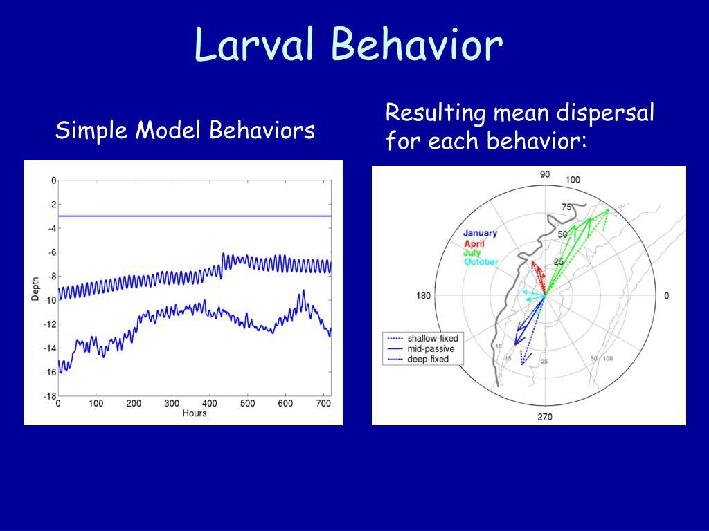 Larval Behavior