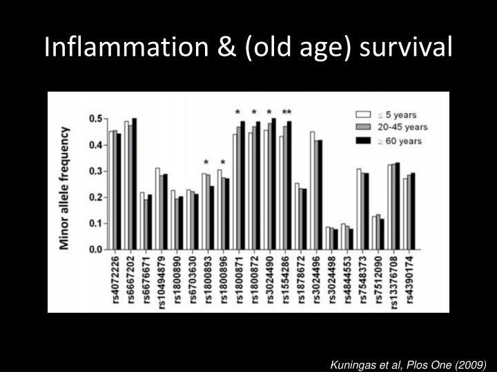 Inflammation & (old age) survival