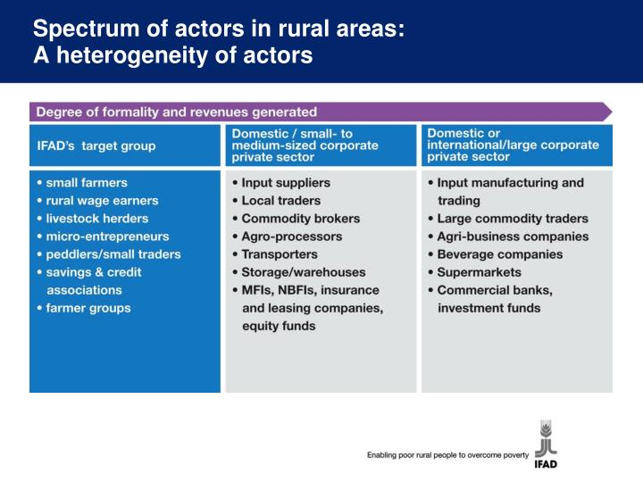 Spectrum of actors in rural areas: