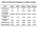 effect of collection frequency on sperm output