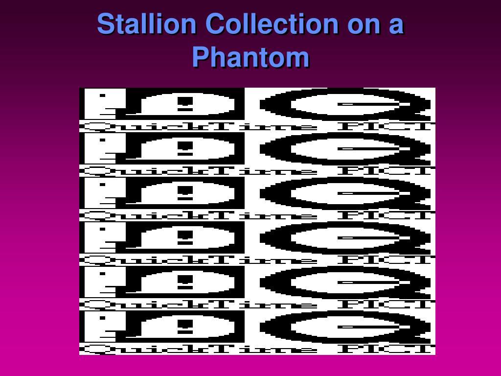 Stallion Collection on a Phantom