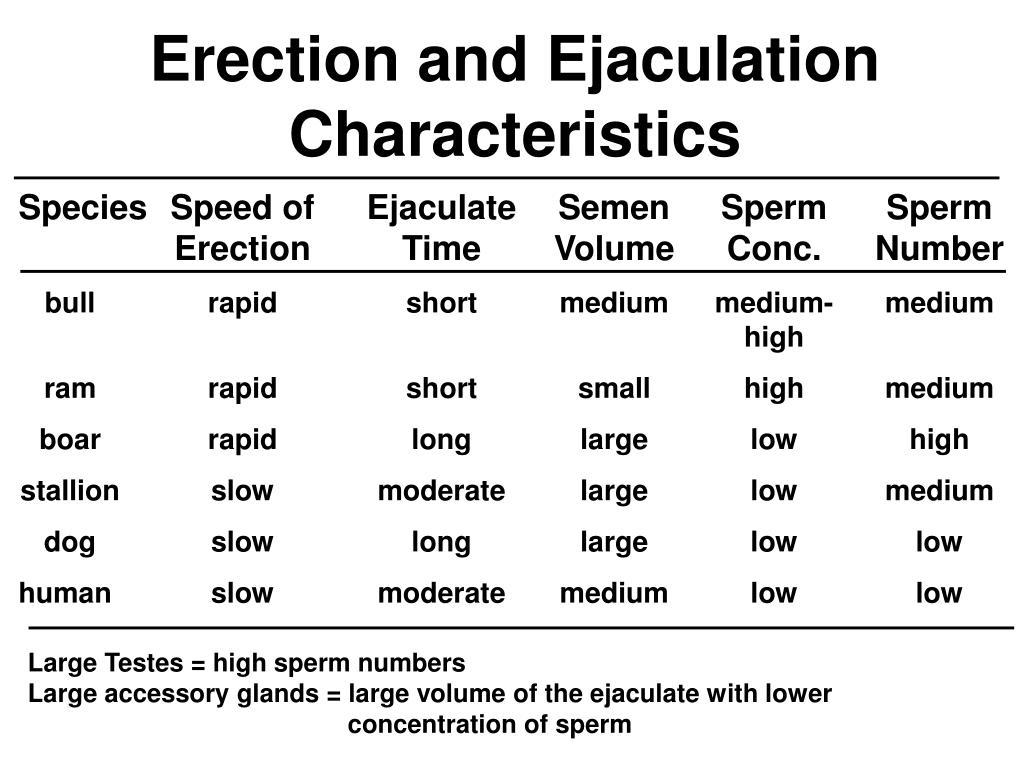 Erection and Ejaculation Characteristics