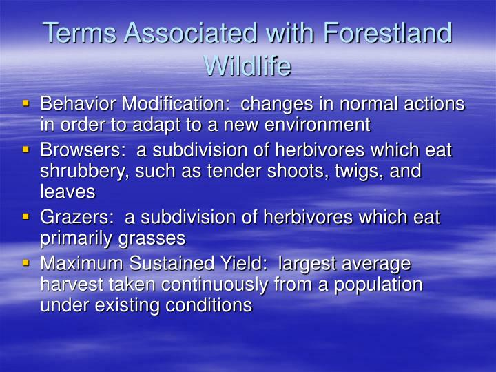 Terms associated with forestland wildlife l.jpg