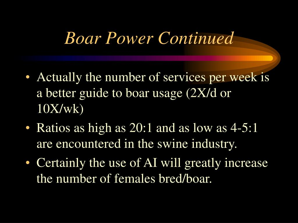 Boar Power Continued