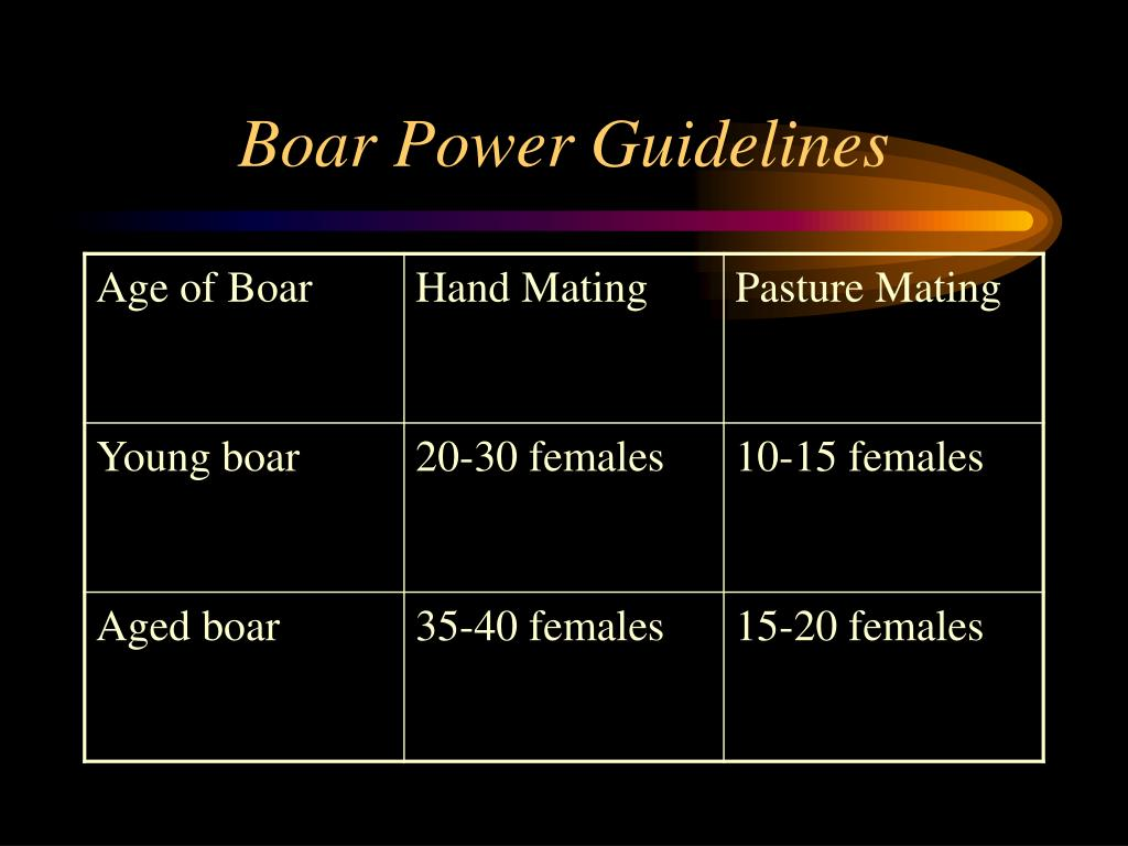 Boar Power Guidelines