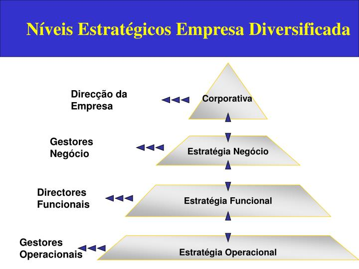 Níveis Estratégicos Empresa Diversificada