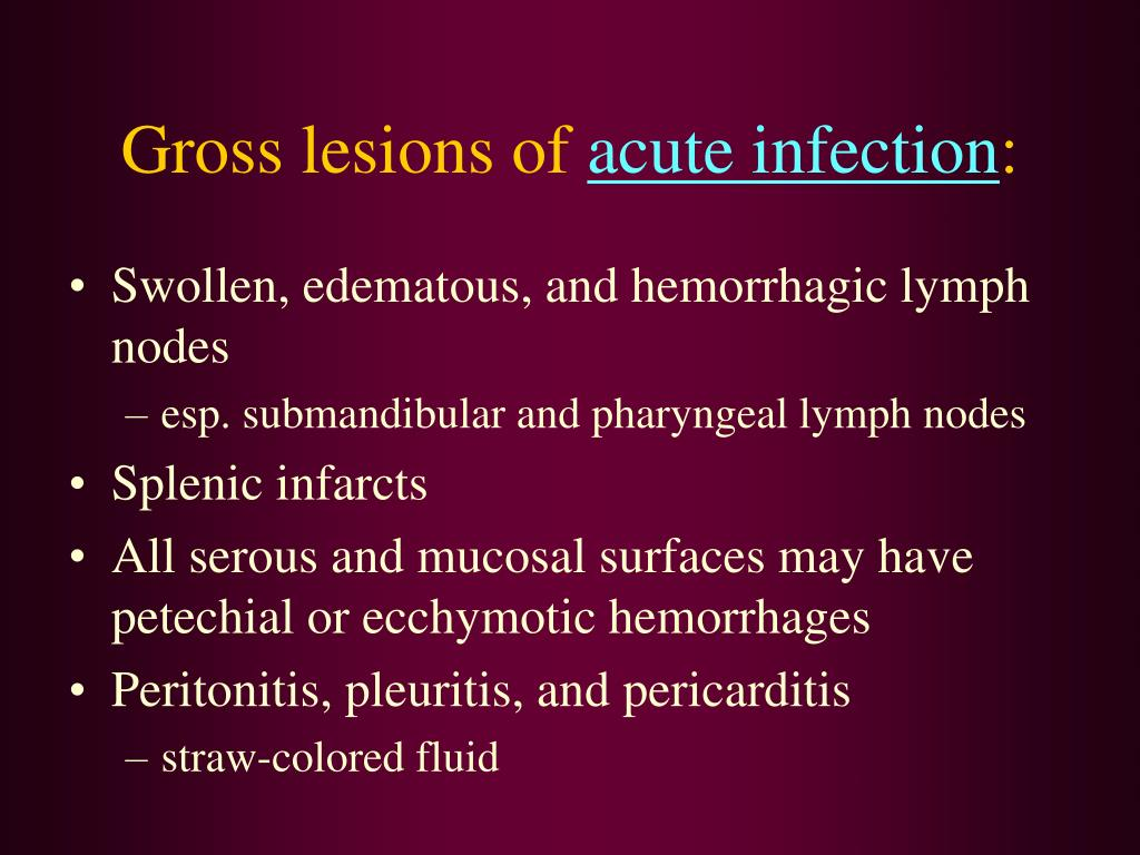 Gross lesions of