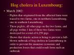 hog cholera in luxembourg44