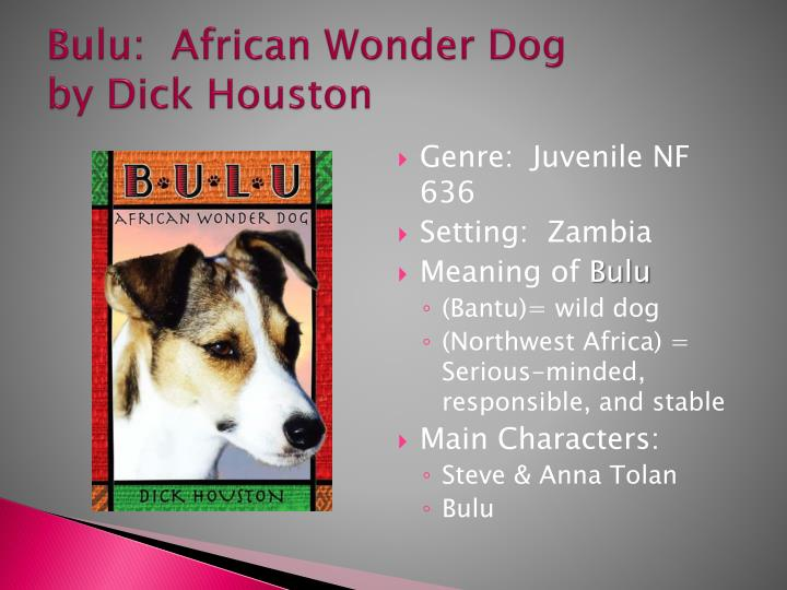 Bulu african wonder dog by dick houston