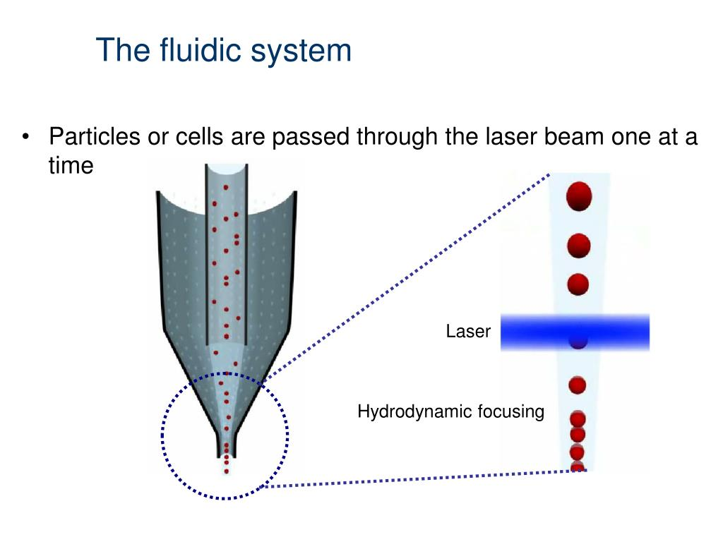 The fluidic system
