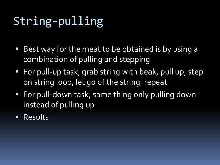 String pulling3
