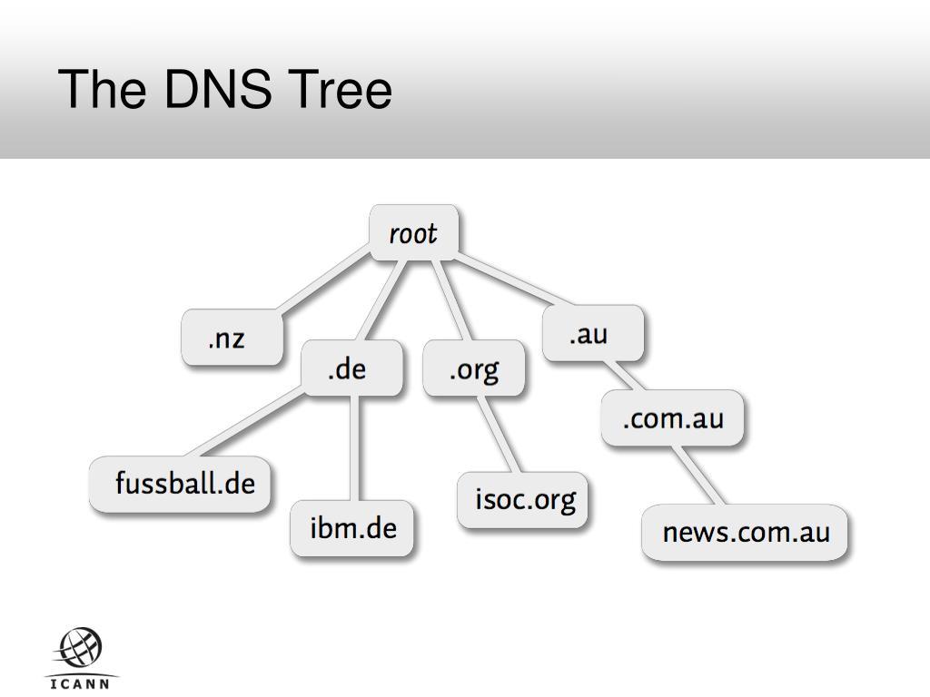 The DNS Tree