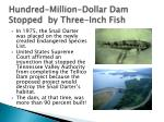 hundred million dollar dam stopped by three inch fish
