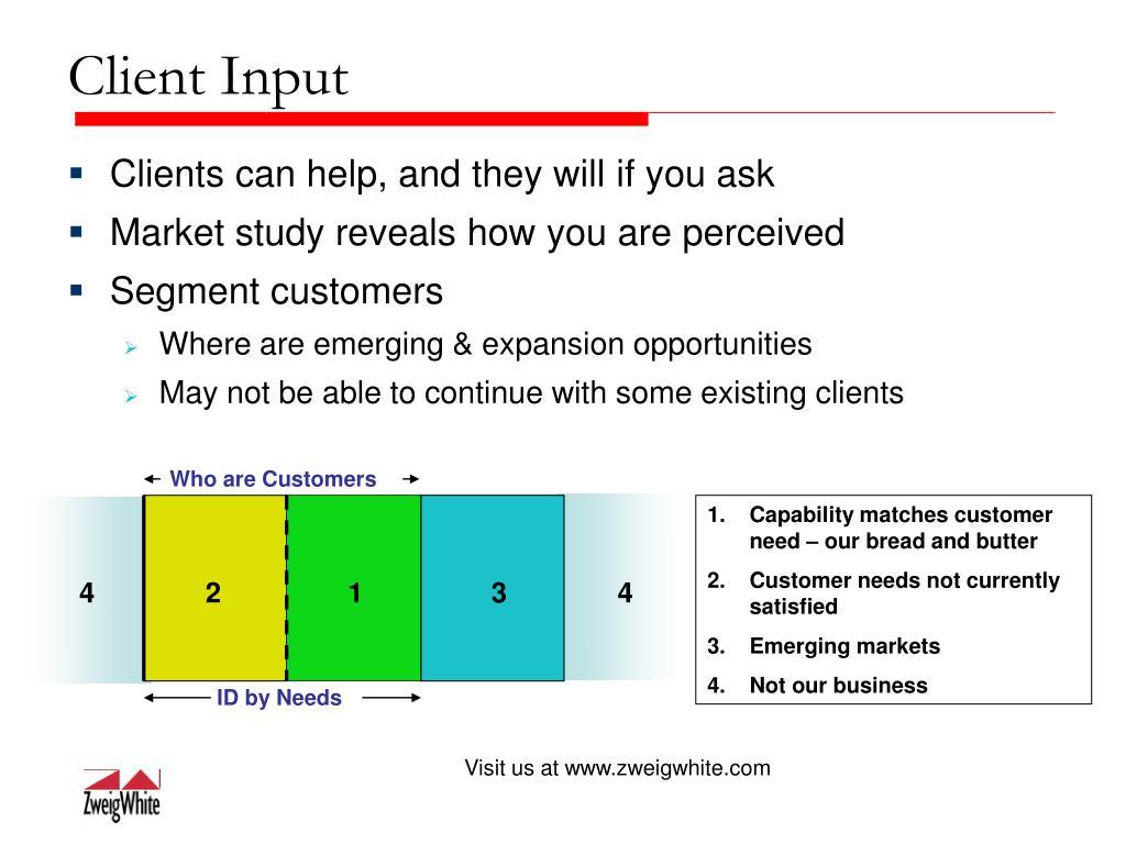 Client Input