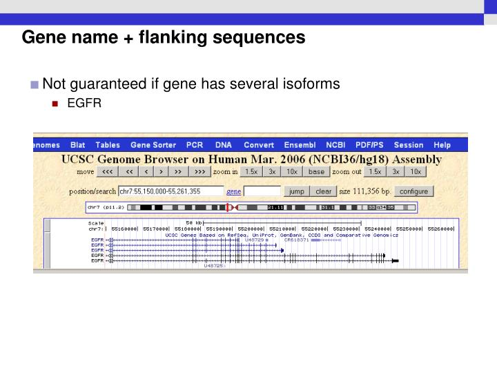 Gene name + flanking sequences