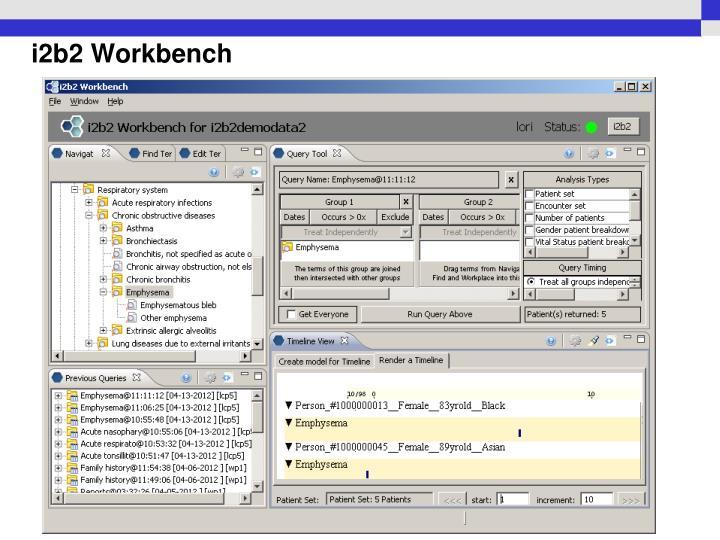 i2b2 Workbench