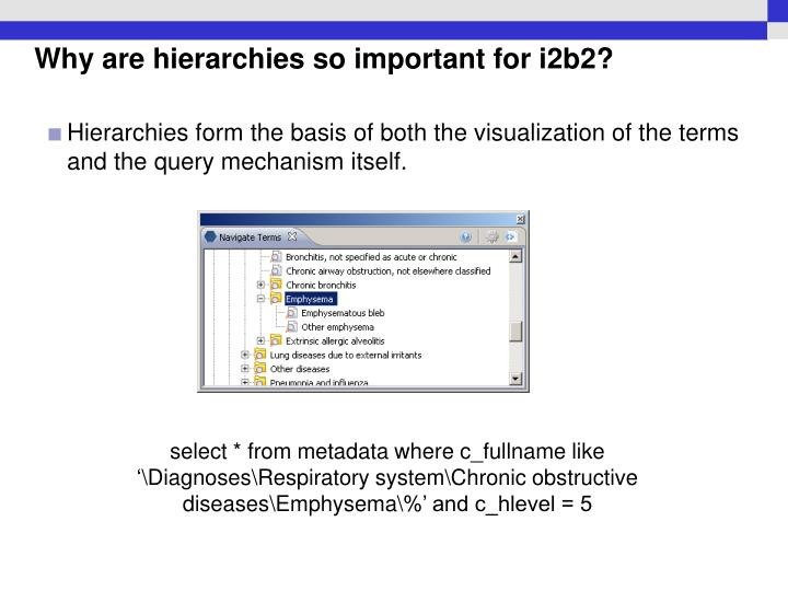 Hierarchies form the basis of both the visualization of the terms and the query mechanism itself.