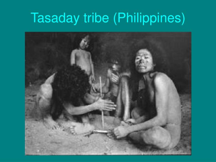 Tasaday tribe (Philippines)