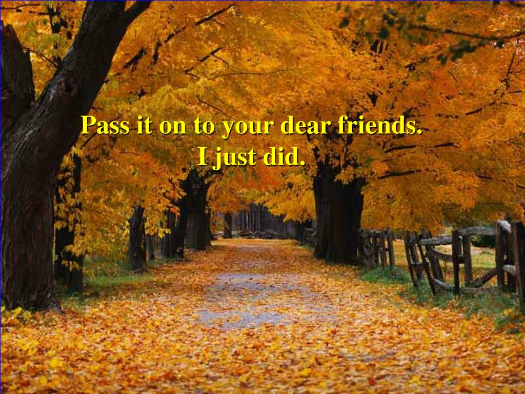 Pass it on to your dear friends.