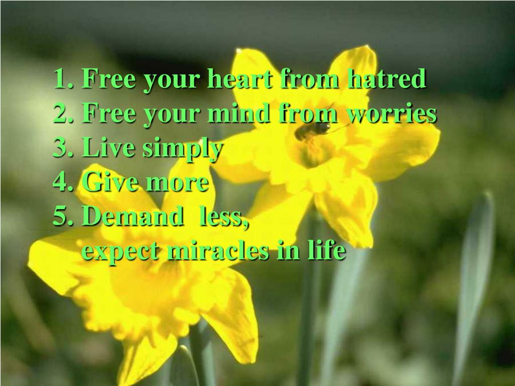 1. Free your heart from hatred