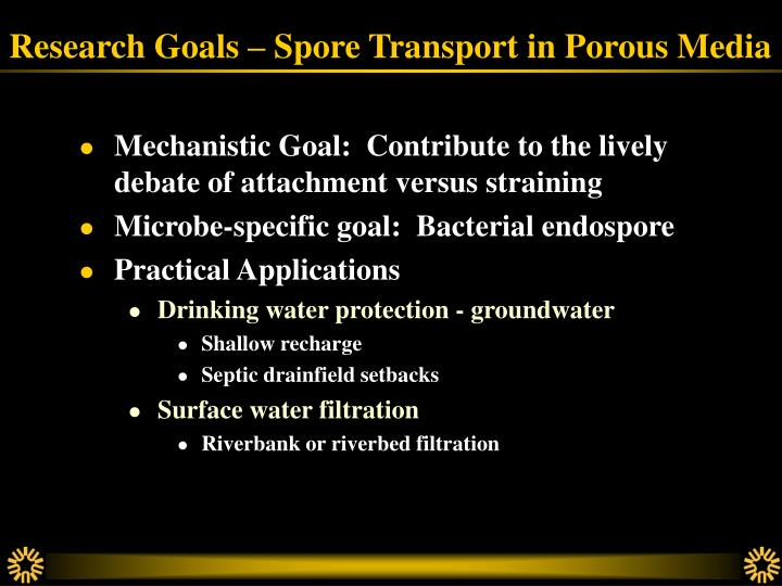 Research goals spore transport in porous media