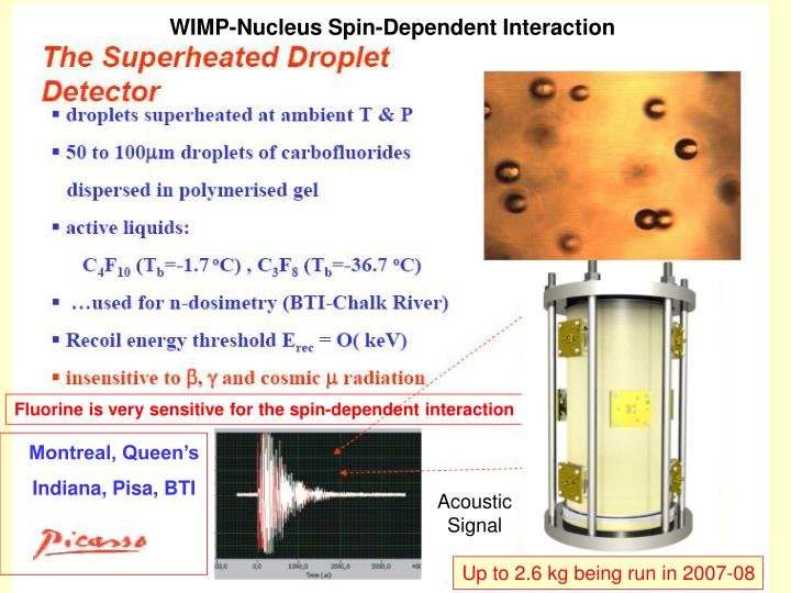 WIMP-Nucleus Spin-Dependent Interaction
