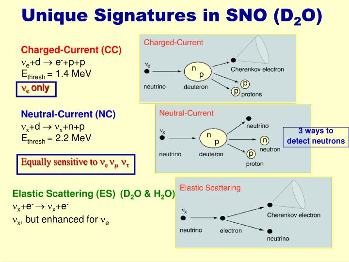 Unique Signatures in SNO (D
