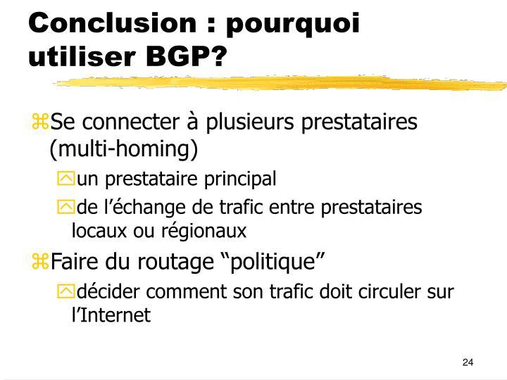 Conclusion : pourquoi utiliser BGP?