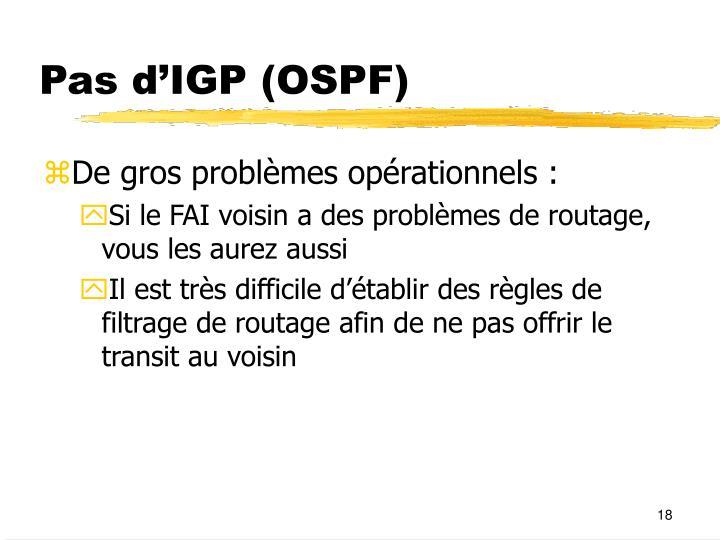 Pas d'IGP (OSPF)