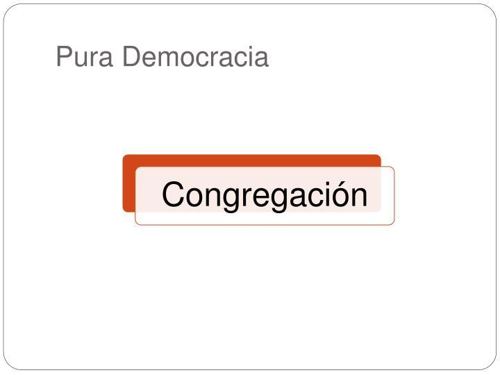 Pura Democracia