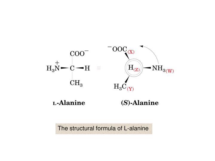 The structural formula of L-alanine