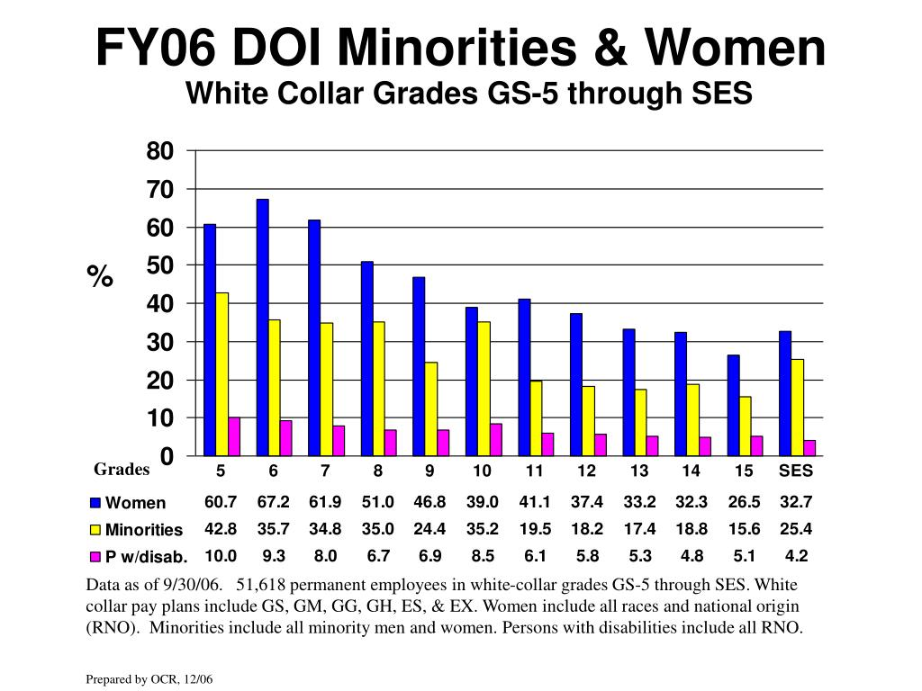 FY06 DOI Minorities & Women