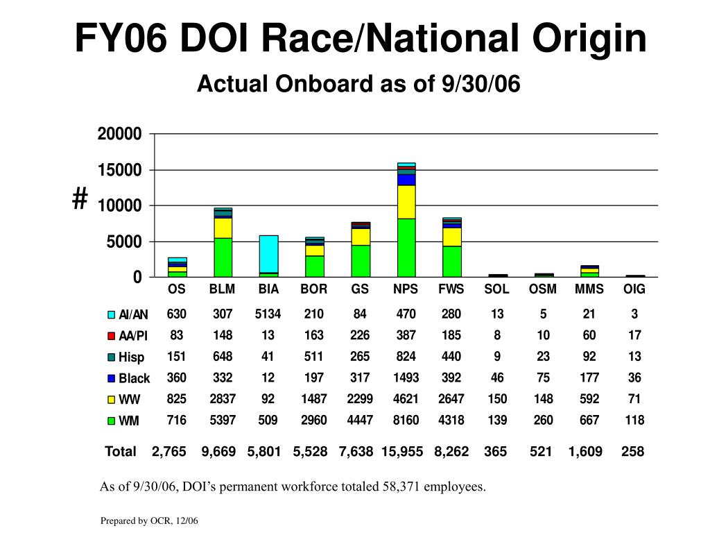 FY06 DOI Race/National Origin