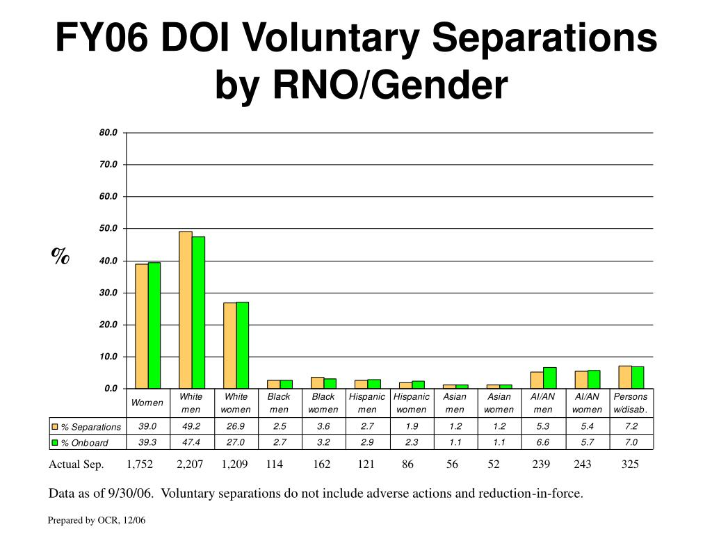 FY06 DOI Voluntary Separations