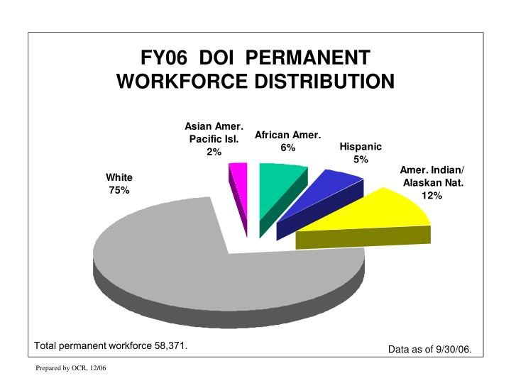 FY06  DOI  PERMANENT               WORKFORCE DISTRIBUTION