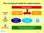the conceptual model for undernutrition