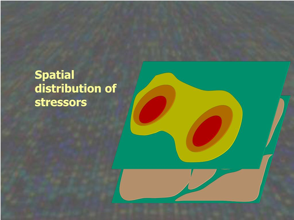 Spatial distribution of stressors