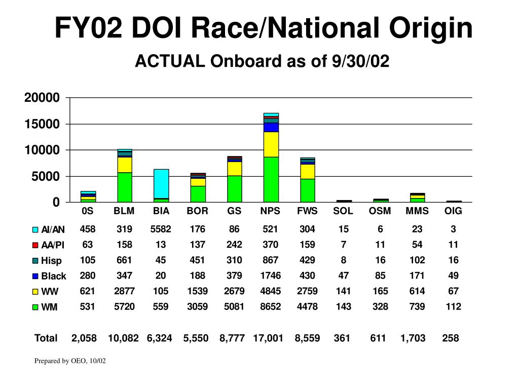 FY02 DOI Race/National Origin