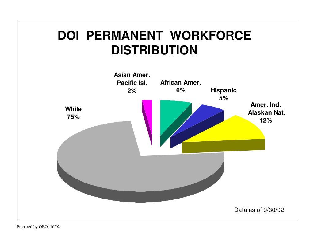 DOI  PERMANENT  WORKFORCE DISTRIBUTION