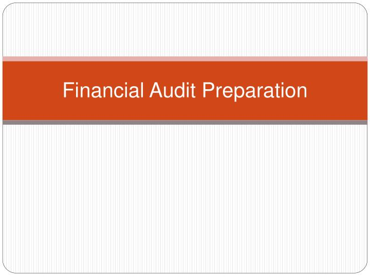 Financial Audit Preparation