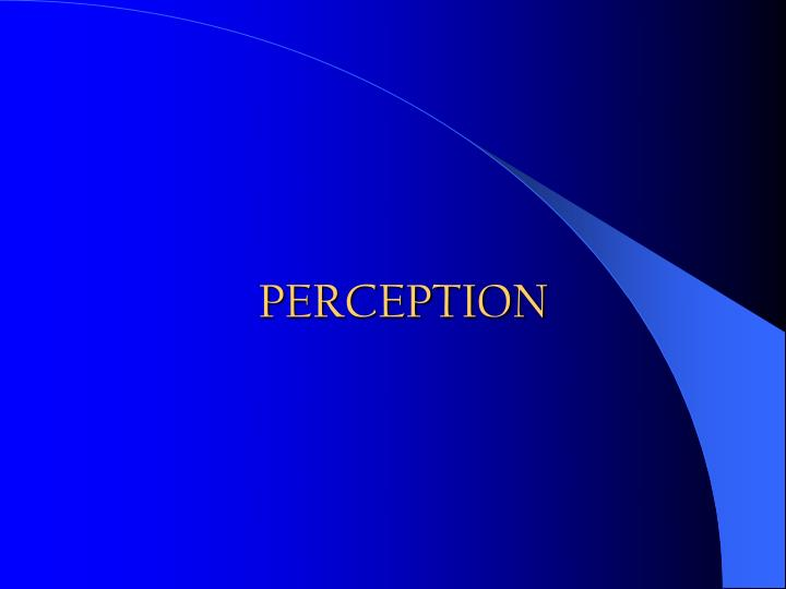 perception definition essay