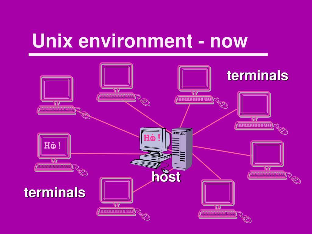 Unix environment - now