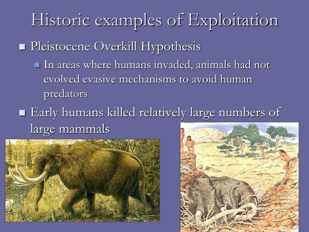 Historic examples of Exploitation